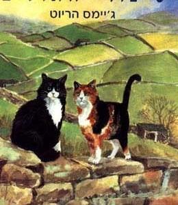 סיפורי חתולים