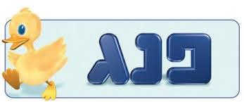 פנג logo