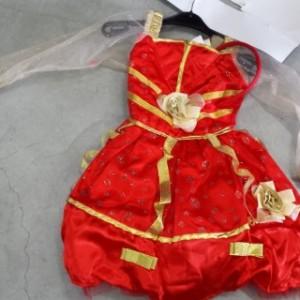 תחפושת נסיכה אדומה פסטיגל שושי זוהר