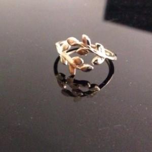 טבעת 1