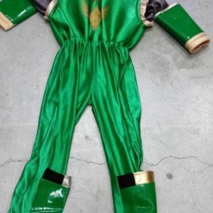 tacdhposet-power-reyngers-green
